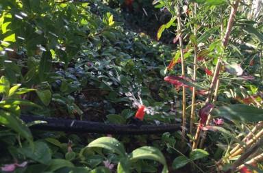 Gardena Automatischen Garten Bewässerung